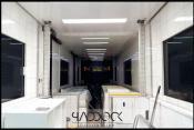 Used trailer WHEELBASE ENGINEERING by Paddock Distribution - Image 4