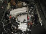 Alfa Romeo GTV 2.5 V6 gr.A - Image 4
