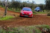 Peugeot 206 Gti - Bild 1